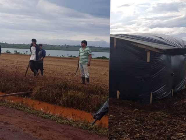Sin tierras siguen invadiendo propiedades privadas y destruyendo cultivos